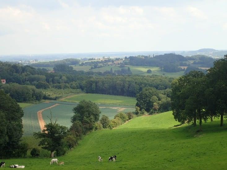 La plaine vue du mont.