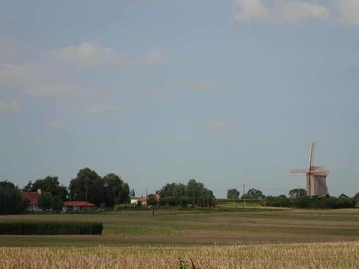 Le moulin de Steenvoorde.