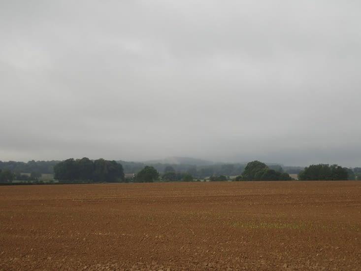 Dans la brume matinale...