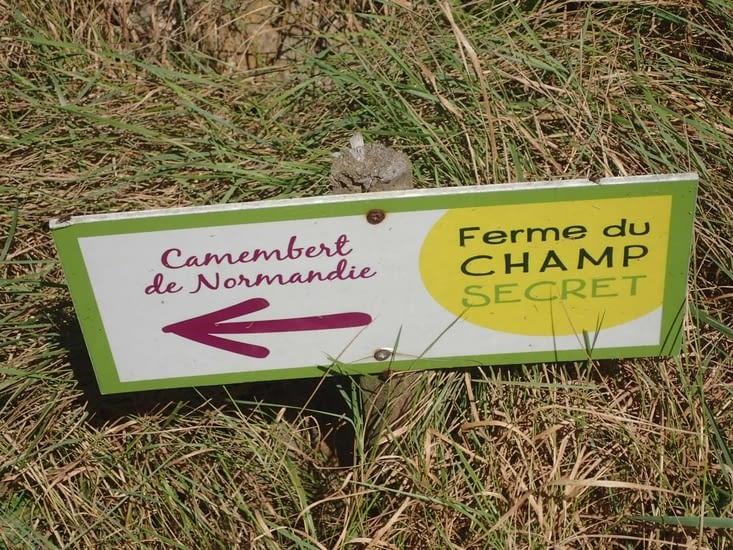 Le camemberts de Champsecret.