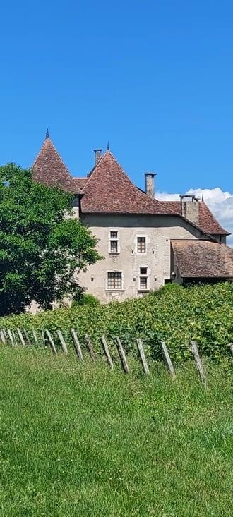 Château du Mas, Jongieux
