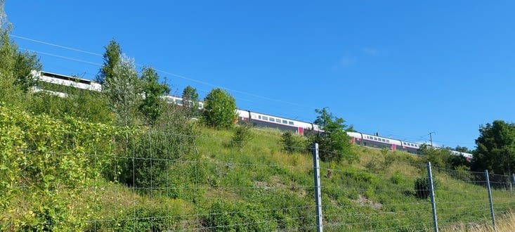 Le chemin longeant la voie du TGV, il permet l'éloge de la lenteur...