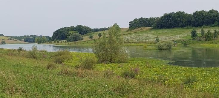 Champs de tournesols, petits lacs, futaies bordent le chemin