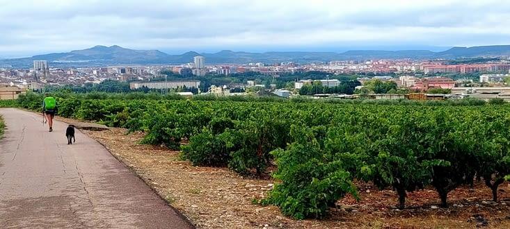 Logroño, capitale du Rioja