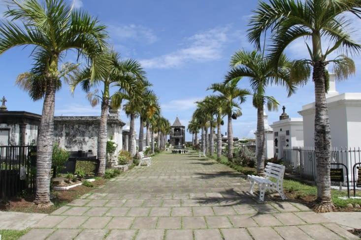 Allée principale du cimetière