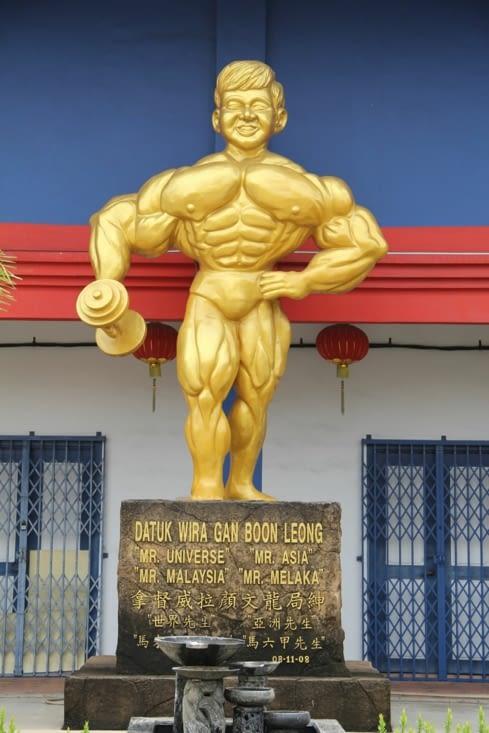 Monsieur muscles