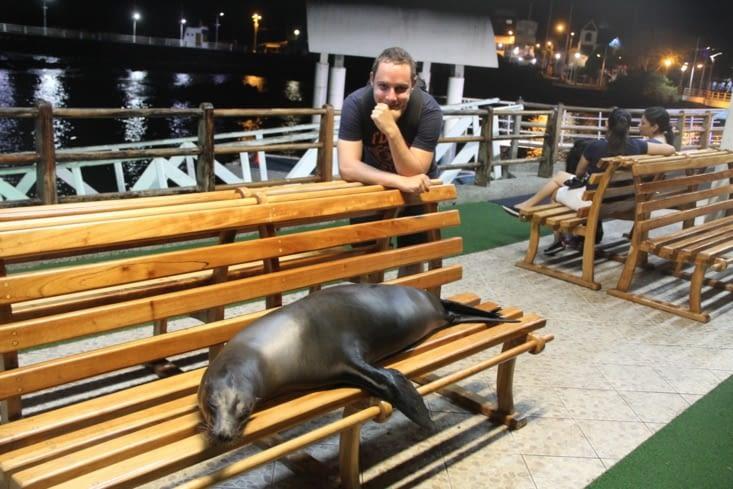Tous les soirs à Puerto Ayora...