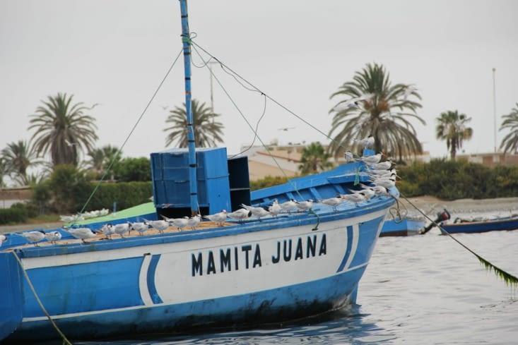 Bateau du port de Paracas