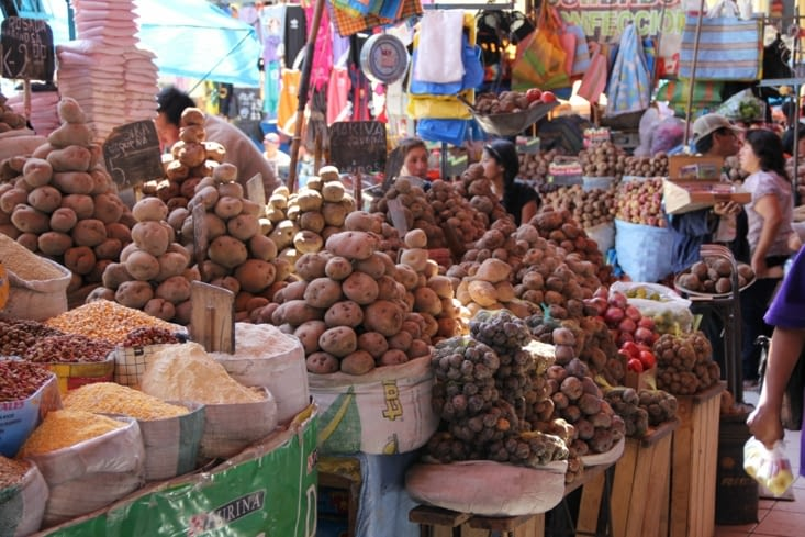 Rayon patates