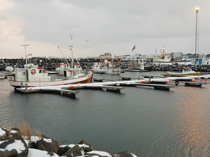 peninsule de reykjavik