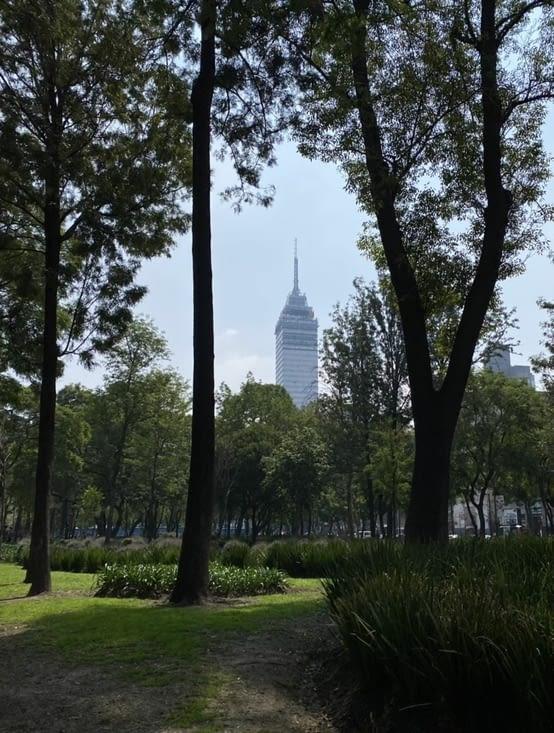 Vue de la tour depuis le parc Alameda Central