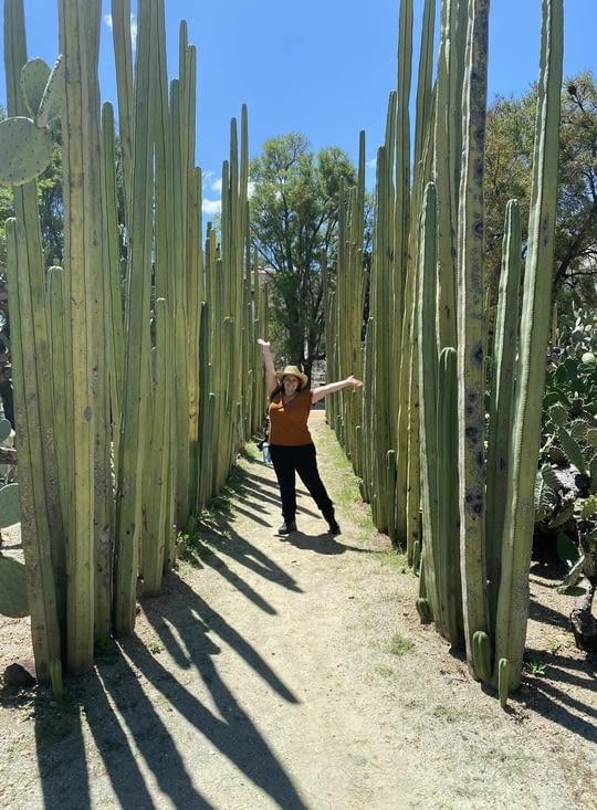 Petite Agathe avec des grands cactus
