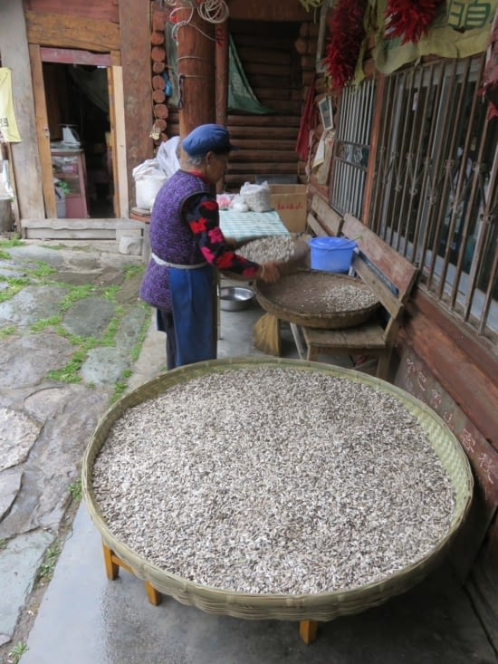 Des pipasses par kilos. C'est une Naxi, ethnie au système matriarchal. C'est donc elle qui gère la maison.