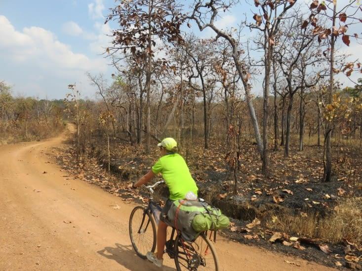 Ce décor sur 200km. Tout est brûlé, sans vie.