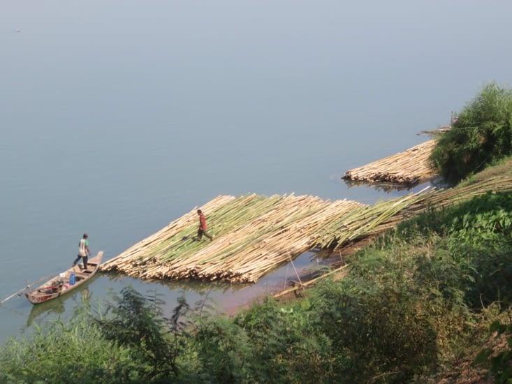 En voilà un, radeau de transport de bambous. Mais ça court pas les rivières non plus.