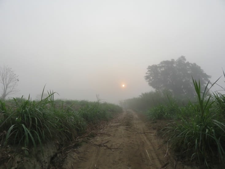 Oula, mais qu'est ce que c'est que cette brume. Ouf, ça se dégage dès 8h, pour redevenir cagnard.