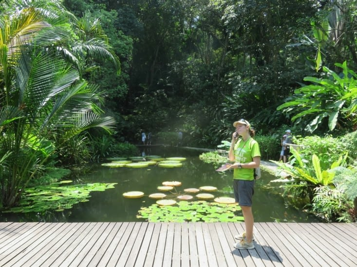 Le Tropical Spice Garden. Avec l'audio guide, on apprend les proprietes interessantes de centaines de plantes et arbres de Malaisie. Plus de 2h d'ecoute.