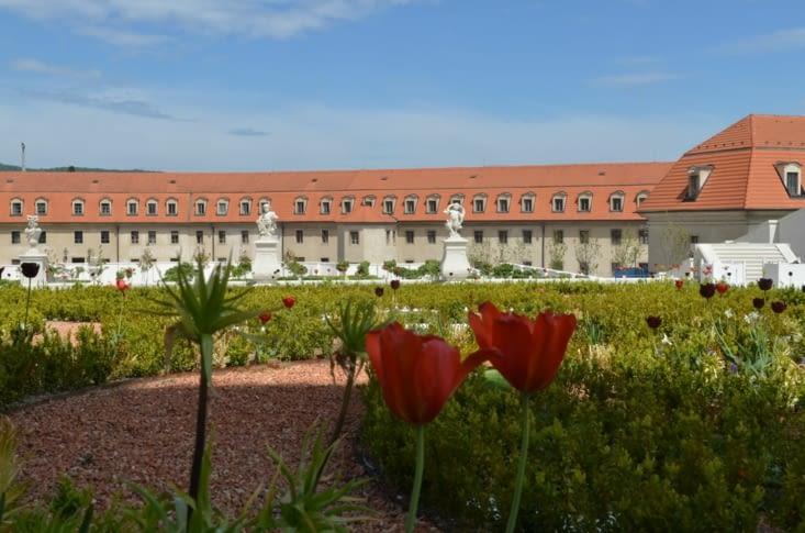 Jardins du chateau, construit sous Marie-Thérèse d'Autriche