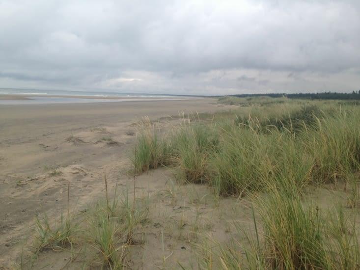Les belles plages sans fin !