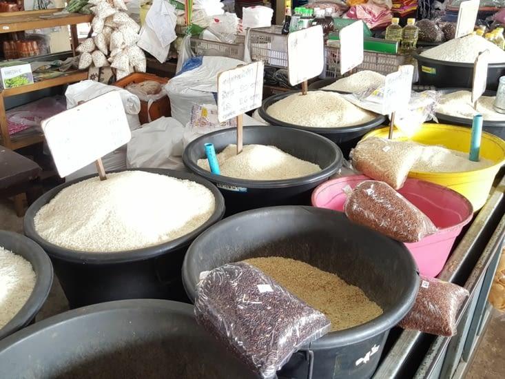 Différentes sortes de riz