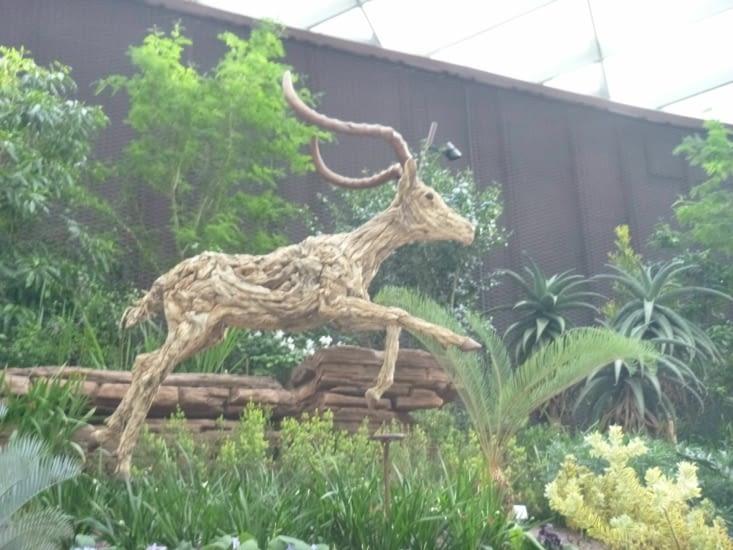 un cerf