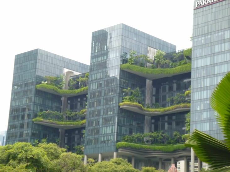 des terrasses vertes