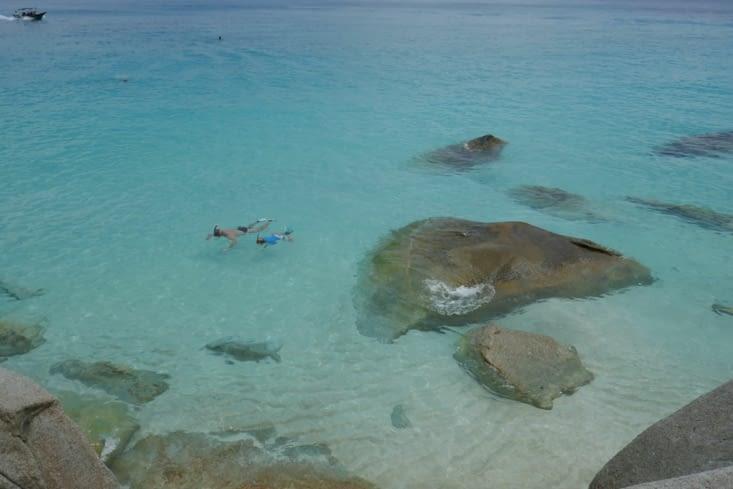 Snorkelling in the baie
