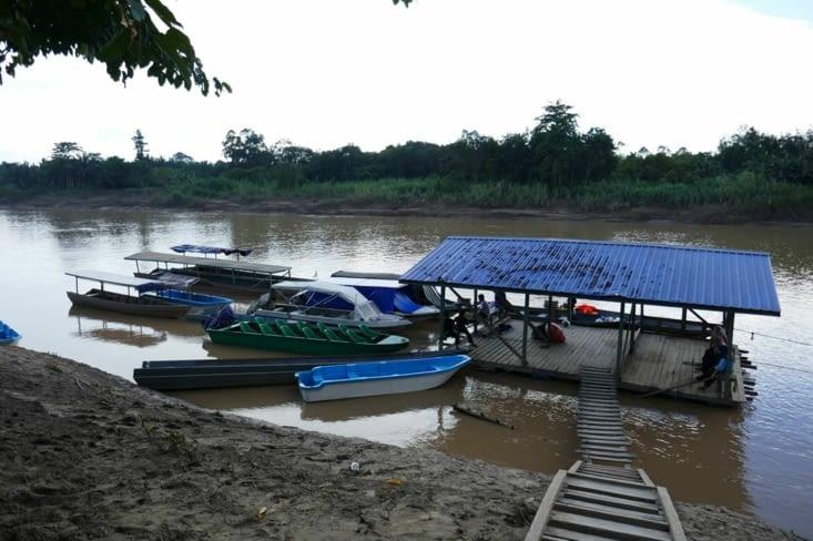 la gare de départ sur la rivière  KINABATANGAN