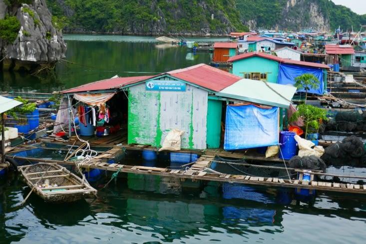 Les pêcheurs font de l'élevage de poissons