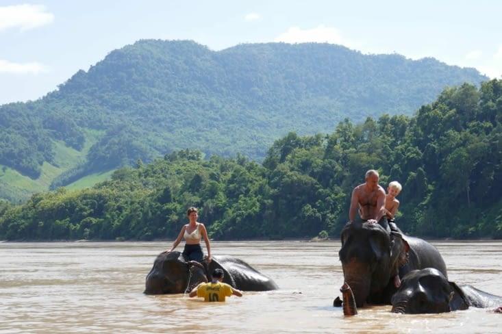 Moins classique, la baignade avec les éléphants dans le Mékong