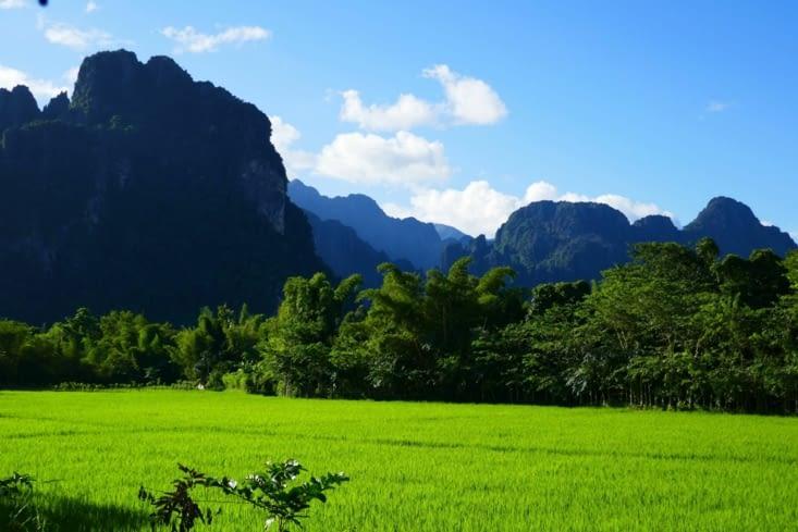 Vue depuis notre chambre: rizières à volonté
