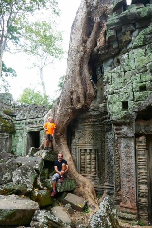 Ces arbres qui fendent les pierres mais leur donnent un tel cachet