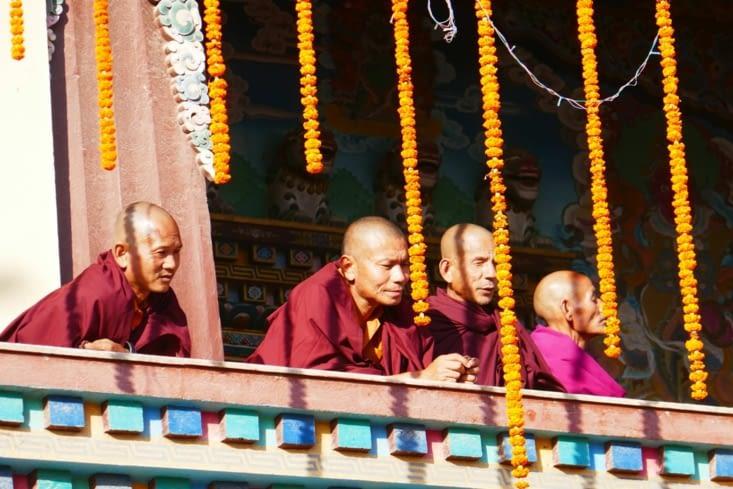 Plein de Nono, pardon de moines...
