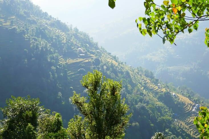 Les terrasses à flanc de montagne