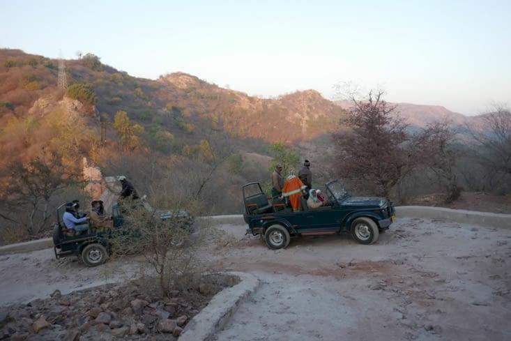 En route pour la chasse aux tigres
