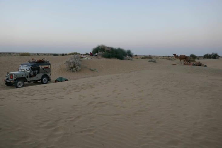 notre campement: 3569 avenue du désert, dune 87