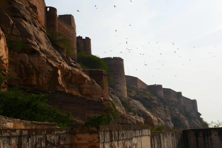Les aigles survolent le fort