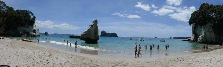 """La célèbre plage """"cathédrale cove"""""""