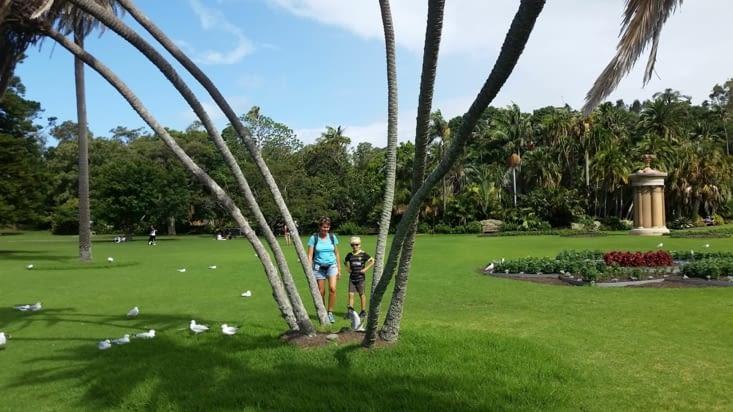 Le parc botanique en plein centre ville