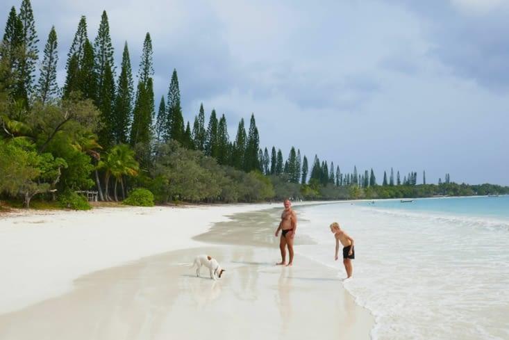 Robinson, samedi et Rantanplan débarquent sur la plage déserte qu'ils nommeront Koto