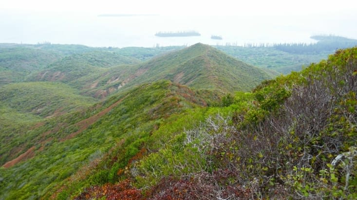 Grimpette sur le point culminant de l'île des pins