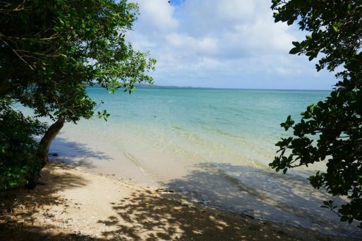 La plage: idéal  pour le bain  du matin et un réveil en douceur
