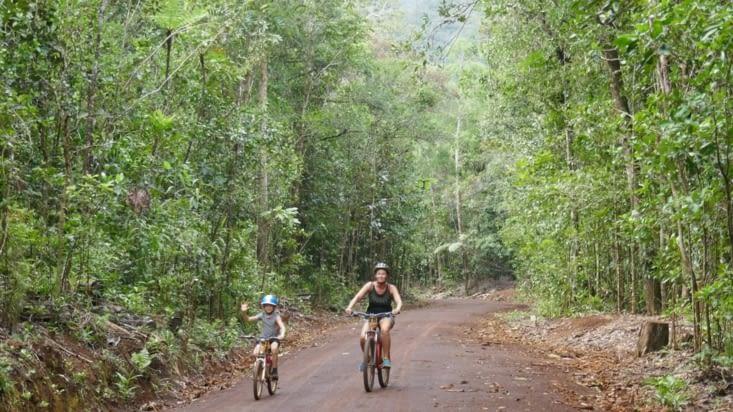 Location de vélos pour une balade dans le parc de la rivière bleue