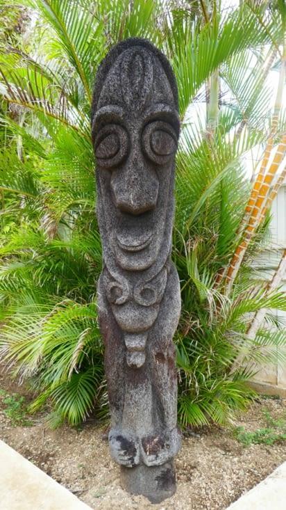 Georges notre pote sculpté dans un tronc de grande fougère et qui orne le jardin