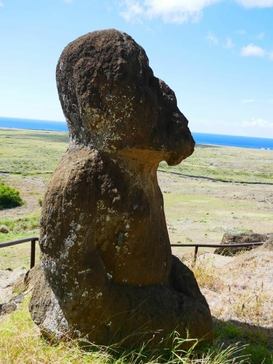 Voici le seul Moai à genoux et avec une barbe