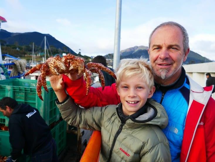 Alors à votre avis : crabe ou araignée de mer ?