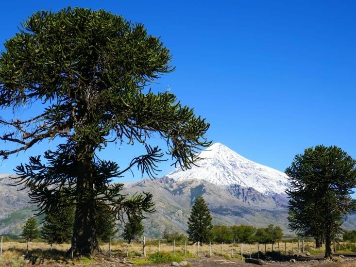 """On se rapproche du Chili et des volcans. Voici le volcan """"Lanin"""""""