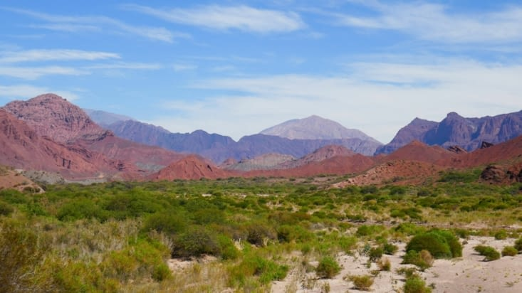 Les paysages sont de plus en plus désertiques