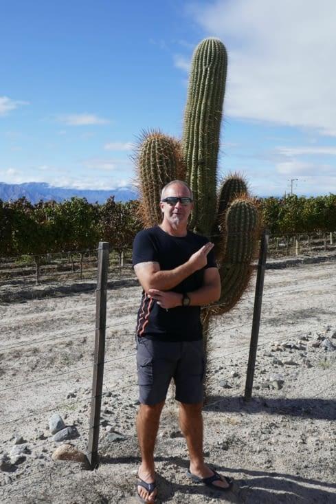 Moi et mon cactus, on surveille les vignes les plus hautes du monde