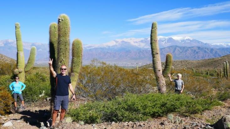 A chacun son cactus monumental !